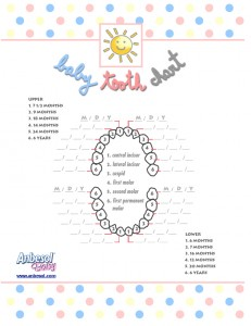 image relating to Printable Tooth Chart named Free of charge Printable Child Enamel Chart in opposition to Anbesol
